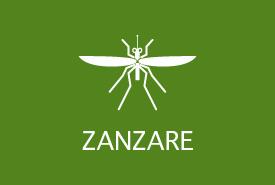 Trappole per insetti: zanzare
