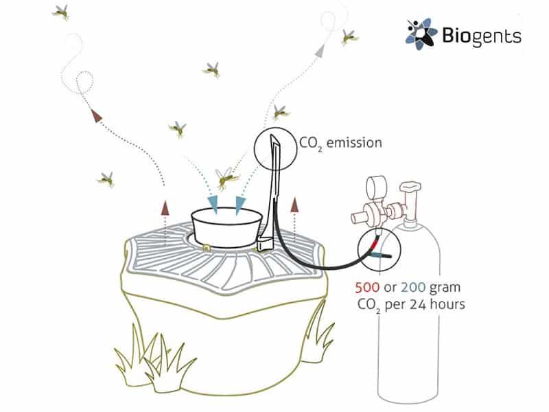 Funzionamento trappola per zanzare BG-Mosquitaire con CO2